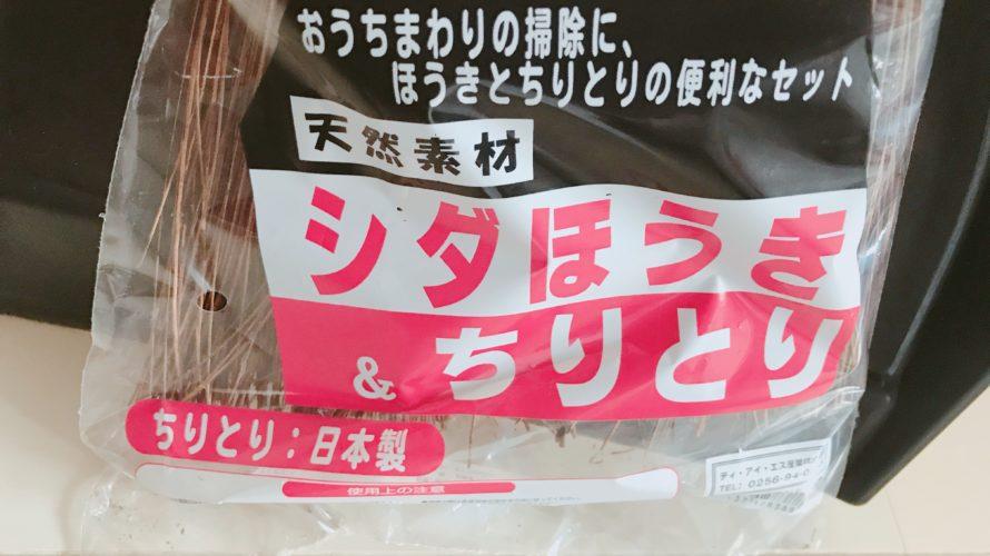 100均 キャンドゥ購入品『シダほうき&ちりとり』