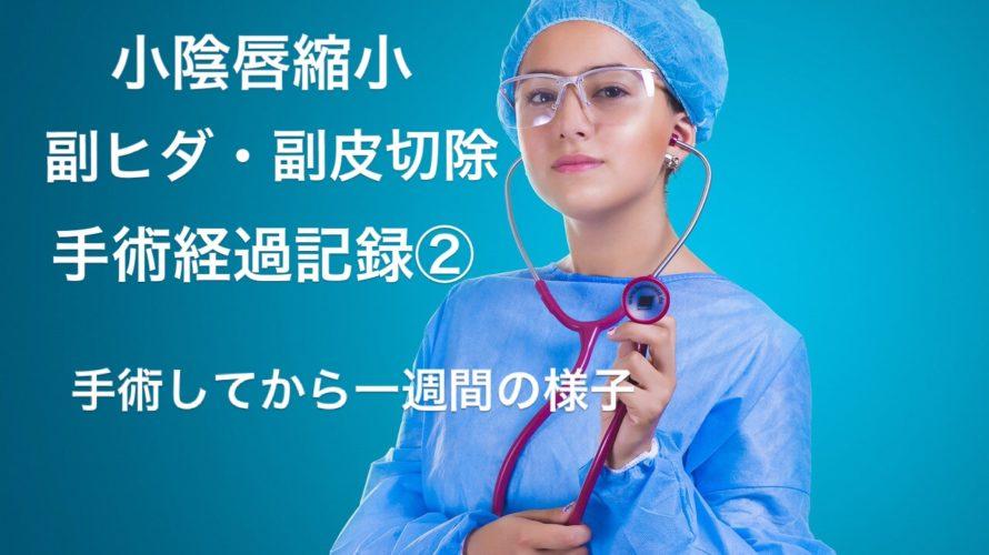 【小陰唇縮小手術、副ヒダと副皮の切除手術】抜糸まで一週間の経過記録