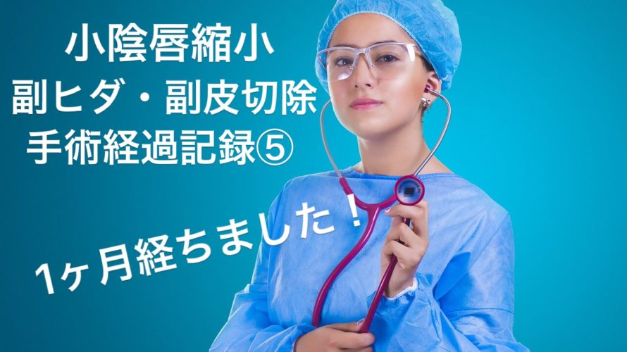 祝★1ヶ月【小陰唇縮小手術、副ヒダと副皮の切除手術】4週間目の経過記録
